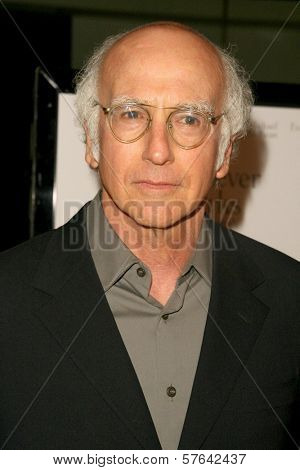 Larry David at the Los Angeles Premiere of 'Whatever Works'. Pacific Design Center, West Hollywood, CA. 06-08-09
