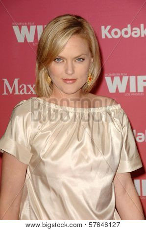 Elaine Hendrix  at the Women In Film 2009 Crystal And Lucy Awards. Hyatt Regency Century Plaza, Century City, CA. 06-12-09
