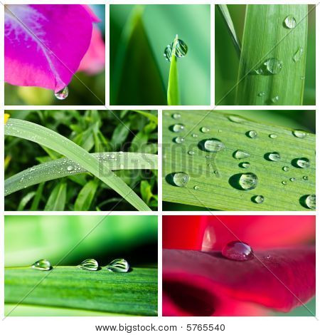 Water Drops Collage