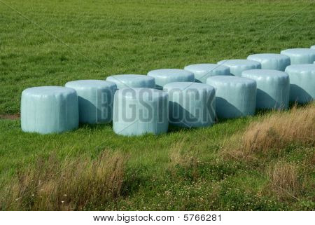 Bales of Silage