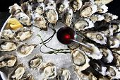 image of souse  - Opened oysters on ice with red souse - JPG
