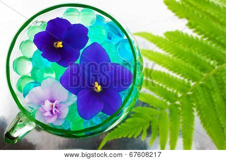 Abstract Image With Violets On Floricultural Theme