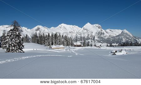 Winter Lanscape In The Toggenburg