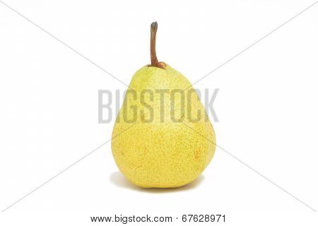One Single Pear