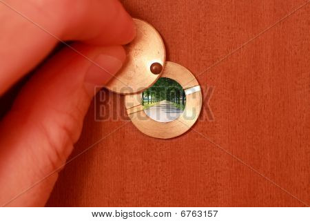 Tree-lined On Peephole