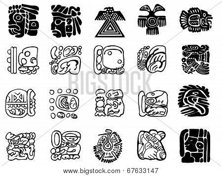 Maya Patterns
