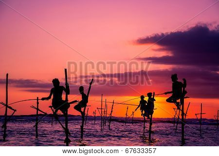 The Traditional Stilt Fishermen in Srilanka