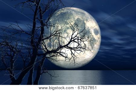 3D landscape background with moon over the sea with dead tree