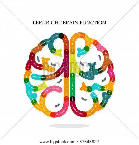 Creative Brain Function