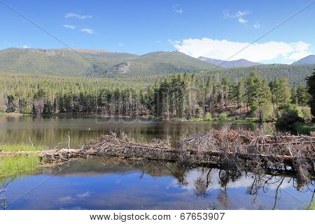 Rocky Mountains - Sprague Lake