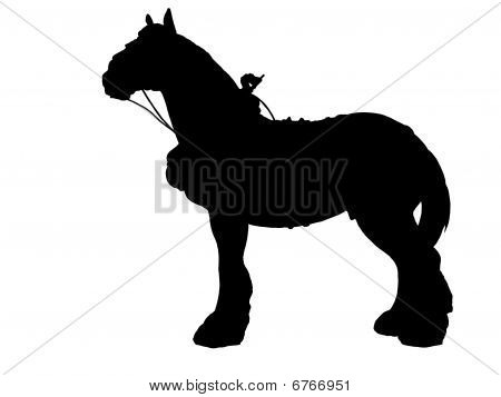 Shire Horse in harness sihouette