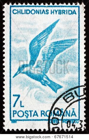 Postage Stamp Romania 1991 Whiskered Tern, Seabird