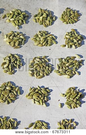 Cardamom, Elaichi, Zingiberaceae Spice For Sale At Market