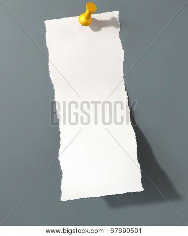 Pinned Paper Plain