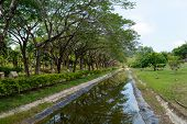 foto of langkawi  - Tropical park in center of Langkawi city - JPG