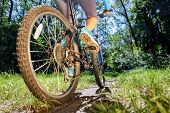 picture of riding-crop  - Young woman on mountain bike fast ride outdoors - JPG