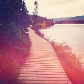 pic of board-walk  - Board walk or path around lake with instagram effect - JPG