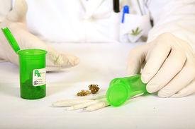picture of loco  - Medical Marijuana Buds - JPG