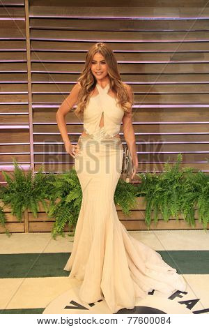 LOS ANGELES - MAR 2:  Sofia Vergara at the 2014 Vanity Fair Oscar Party at the Sunset Boulevard on March 2, 2014 in West Hollywood, CA