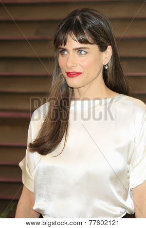 LOS ANGELES - MAR 2:  Amanda Peet at the 2014 Vanity Fair Oscar Party at the Sunset Boulevard on March 2, 2014 in West Hollywood, CA