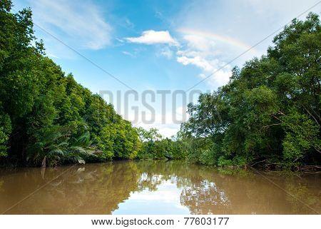 Scenic Mangrove View Of Kota Belud, Sabah,malaysia.