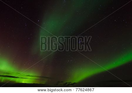 Auroras On A Starry Sky