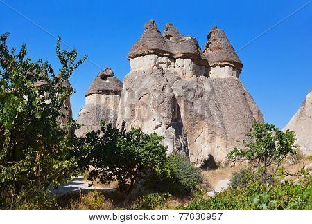 Fairy chimneys (rock formations) at Cappadocia Turkey - nature background