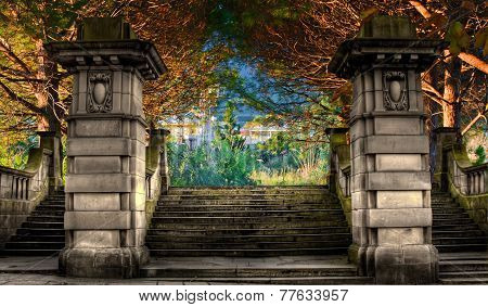 Pathway Through Colorful Forest In Fall/autumn