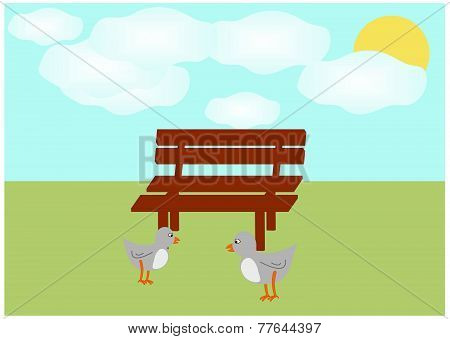 Two pigeons in front of a bench