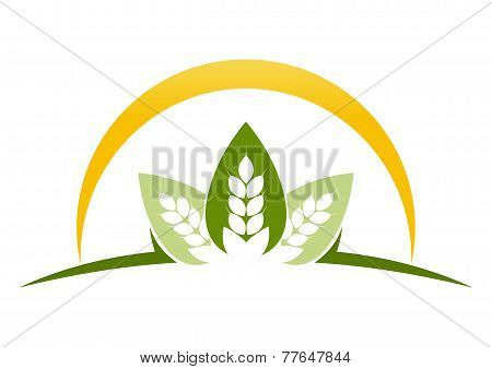 leaf farm land abstract logo