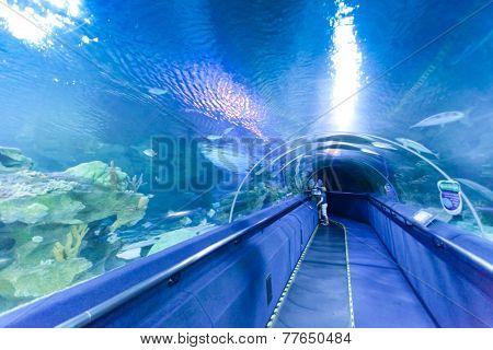 KUALA LUMPUR, JULY 5: A group of tourists visiting the aquarium in Kuala Lumpur, Malaysia on July 5, 2014.
