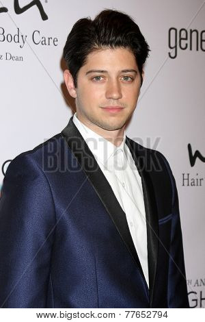 LOS ANGELES - DEC 5:  Chris Galya at the 6th Annual Night Of Generosity at the Beverly Wilshire Hotel on December 5, 2014 in Beverly Hills, CA
