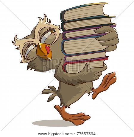 Satisfied owl carries books
