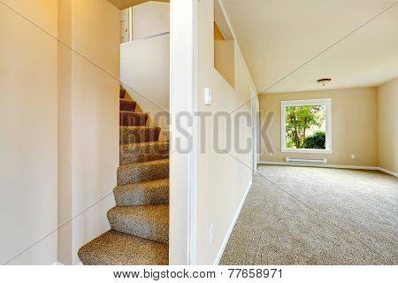 Staircase With Carpet Steps In Empty House