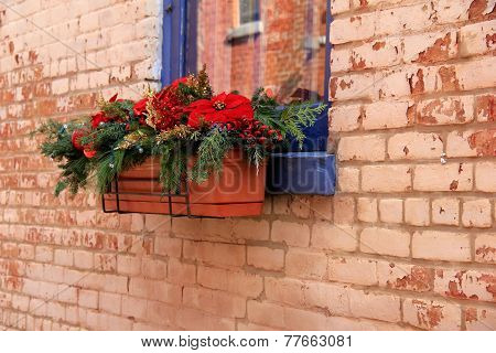 Window box filled with Christmas cheer