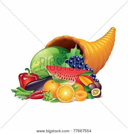 Cornucopia Isolated On White Vector