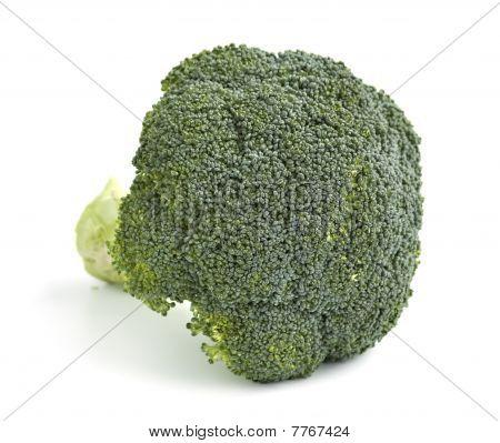 An Isolated Head Of Brocolli