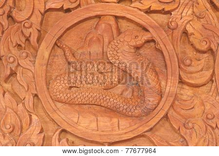 Snake Chinese Zodiac Animal Sign