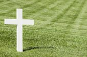 image of arlington cemetery  - White cross on green lawn - JPG
