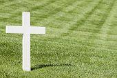 stock photo of arlington cemetery  - White cross on green lawn - JPG