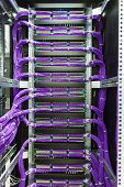 pic of utp  - Large group of lilac utp Internet cables in rack data center - JPG
