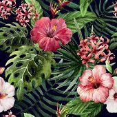 foto of jungle exotic  - trend illustration pink object brush purple exotic - JPG