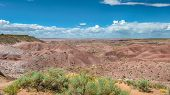 pic of petrified  - Tiponi Point, Painted Desert, Petrified Forest National Park, on Route 66, near Holbrook, Arizona. ** Note: Soft Focus at 100%, best at smaller sizes - JPG