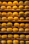 foto of meals wheels  - Cheese wheels on the shelves in Amsterdam store - JPG