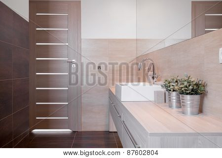 Modern Toilet For Guests