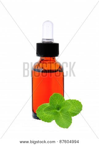 Bottle With Essence Oil And Mint Herb Isolated On White