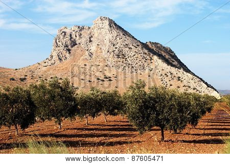 Lovers Mountain, Antequera.