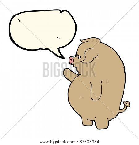 cartoon fat pig with speech bubble