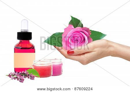 Pink Rose In Woman Hand And Bottle With Essence Oil On White Background