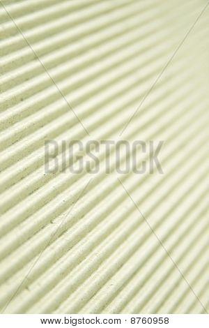 Corrugated  Paper Texture